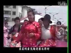 安徽民间小调全集搞笑《潘金莲拾麦》