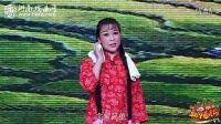河南豫剧大全:《朝阳沟》