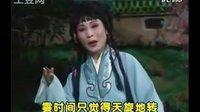 河南豫剧大全:《阴阳恨》
