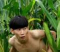 《神马四兄弟》全集百度影音在线播放 哈尔滨地方戏院贺岁片