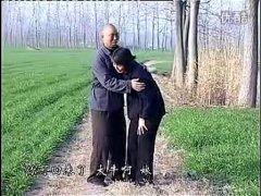 安徽民间小调全集《女乞丐》